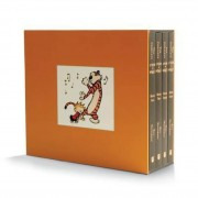 Introducing the Enlightenment  A Graphic Guide (English) 14a17669ce
